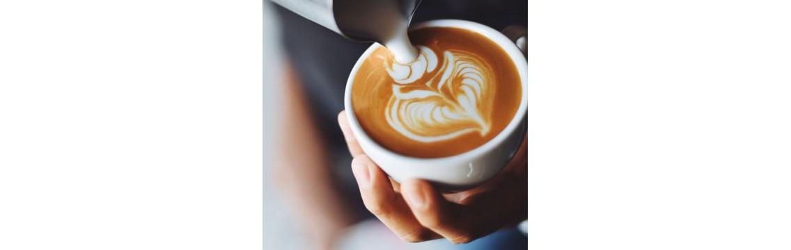 Leidenschaft für Kaffee. Tradition seit 1882 - Caffé Vergnano