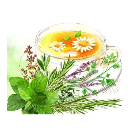 Kräuter Tees