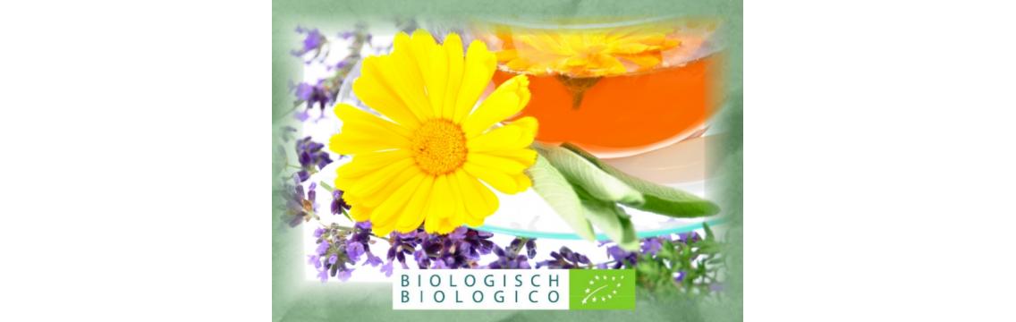 Tee aus Südtirol für bewusste Teetrinker aus rein biologischem Anbau.