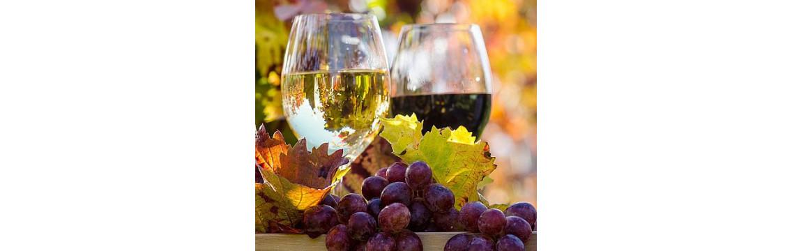▷ Weinhandel Online - Wien